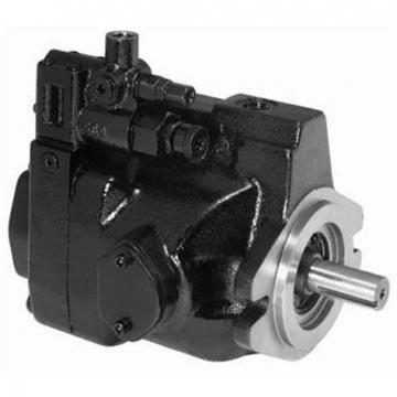 PAKER YB-E200 Piston Pump