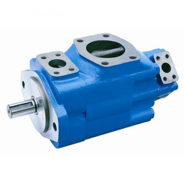 Yuken PV2R14-10-153-F-RAAA-31 Double Vane pump #2 image